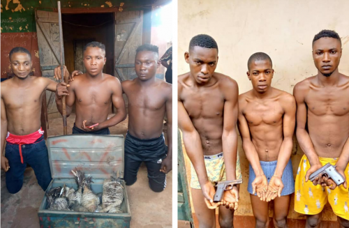 Security operatives nab suspected kidnappers, robbers in Kogi